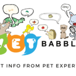 VetBabble – Pet Info from Pet Experts