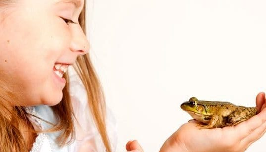 frog with girl