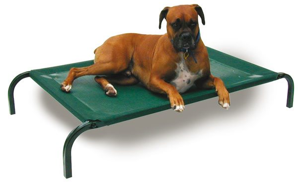 Dog trampoline bed