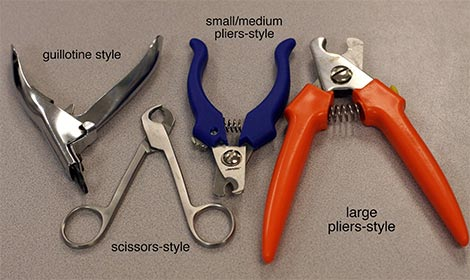 cats_types-of-nail-trimmers