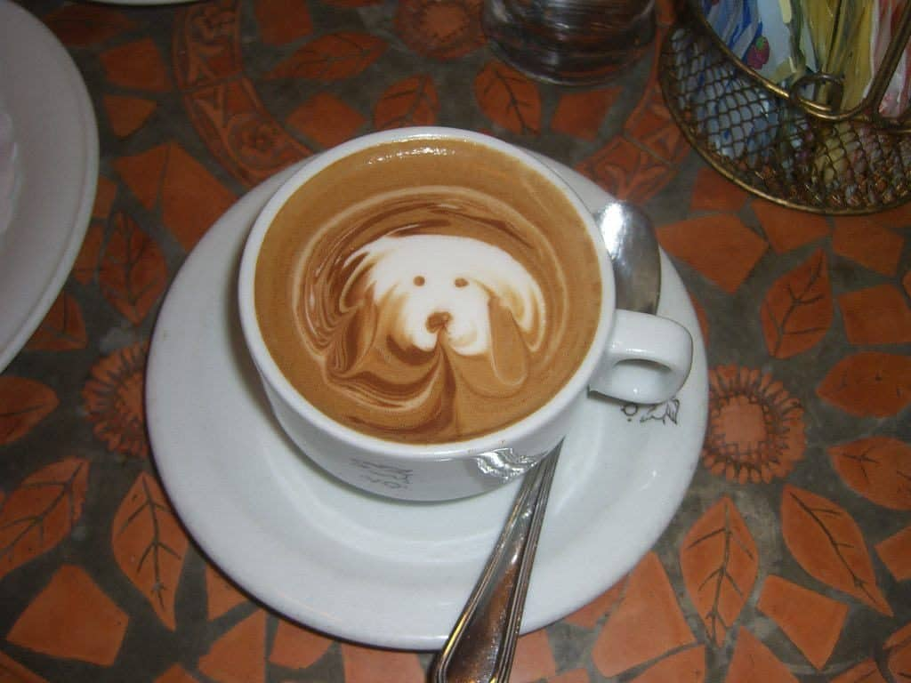 Coffee with a dog art on it