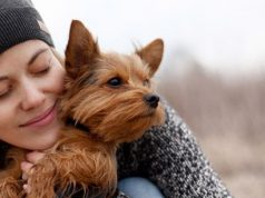 Dog hugged by a woman