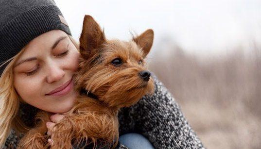 Dog hugged by a woman