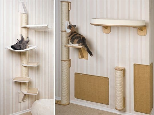 Getting A Cat A Scratching Post