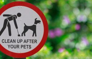 Sign 'Pick up after your pets'