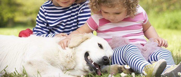 dog with kids