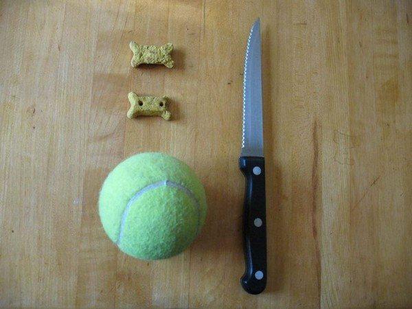 tennisballtoy